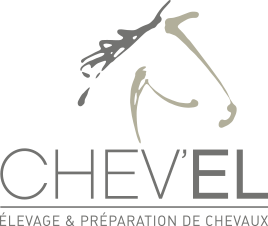 Logo Chevel