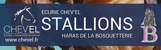 Stallions Chev'el